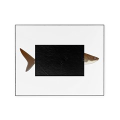 Whale Shark f Picture Frame