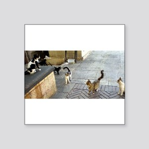 Merkaz Cats 19 Sticker