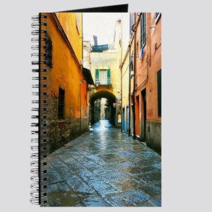 Streets of Lucca Journal