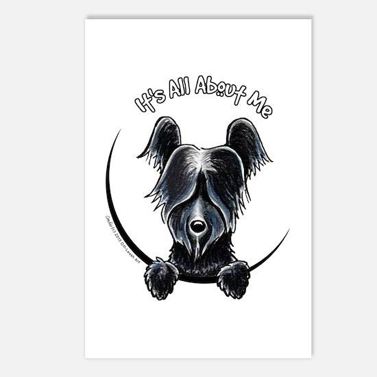 Skye Terrier IAAM Postcards (Package of 8)