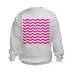 Hot pink chevron Sweatshirt