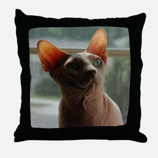 Cute Hairless cat Throw Pillow