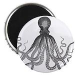 Vintage octopus 2.25