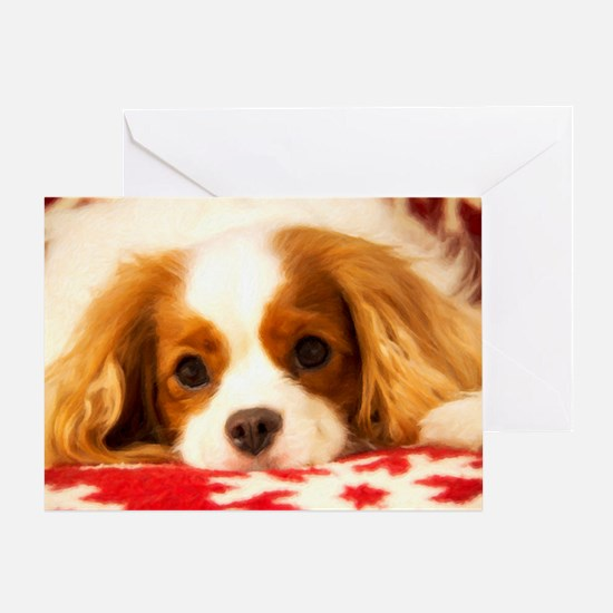 Adorable Cavalier King Charles Holiday Card