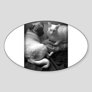 Orbit and Stella Sticker