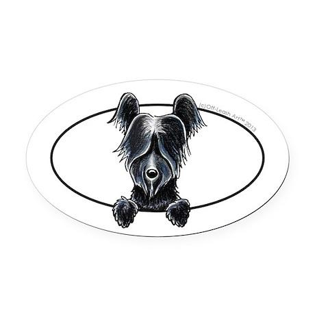 Skye Terrier Peeking Oval Car Magnet