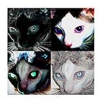 LabRat the Wonder Cat's Funky Tile Coaster
