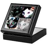 LabRat the Wonder Cat's Funky Keepsake Box