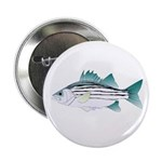"""White Bass ft 2.25"""" Button (10 pack)"""