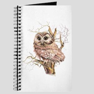 Cute Baby Saw Whet Owl Watercolor Bird Journal