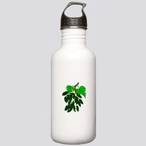 Bunch of peppers green Water Bottle