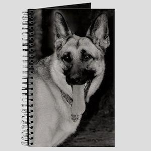 Skyylar Journal