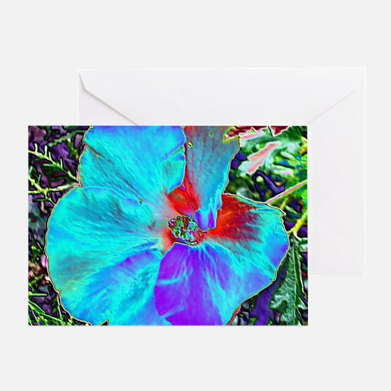 Native Hibiscus flower in bloom Greeting Card