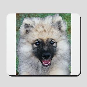 Keeshond Puppy Mousepad