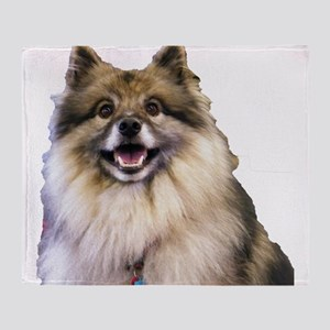 Keeshond Head Shot Throw Blanket