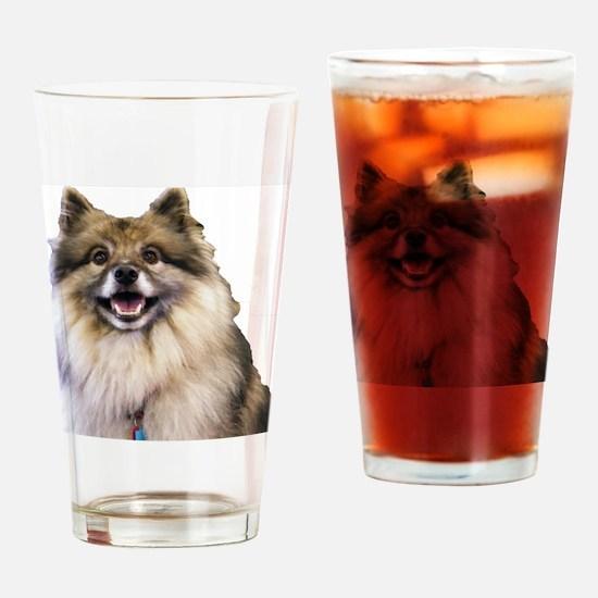 Keeshond Head Shot Drinking Glass