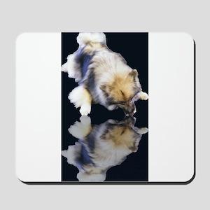 Keeshond Reflection Mousepad