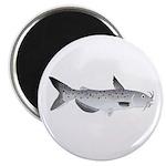 Channel Catfish 2f Magnet