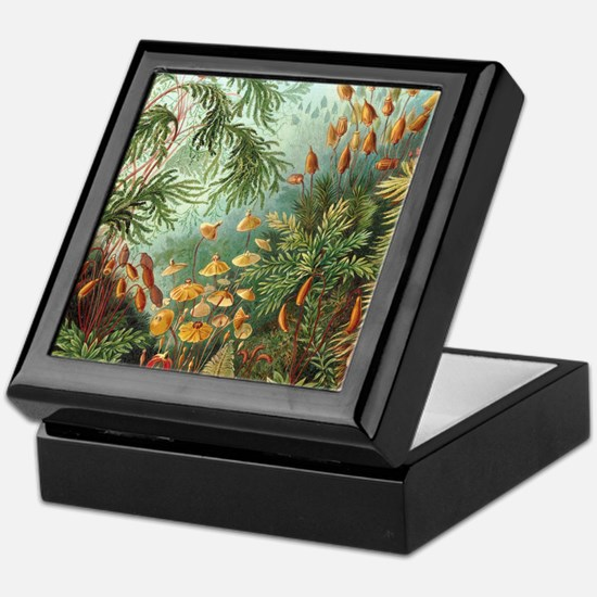 Nature Scene Art Keepsake Box