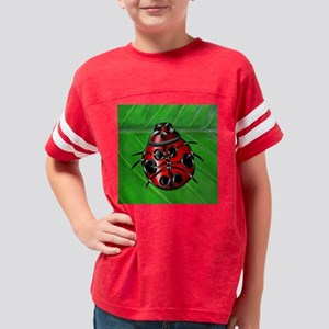 Ladybug6 Youth Football Shirt