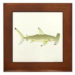 Great Hammerhead Shark f Framed Tile