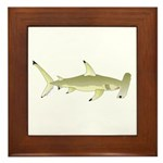Great Hammerhead Shark f Framed Tile