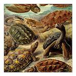 Beautiful Turtle Artwork Square Car Magnet 3