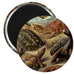 Beautiful Turtle Artwork Magnet