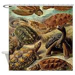 Beautiful Turtle Artwork Shower Curtain