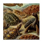 Beautiful Turtle Artwork Tile Coaster