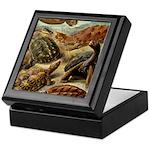 Beautiful Turtle Artwork Keepsake Box