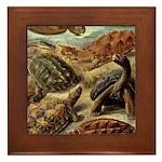 Beautiful Turtle Artwork Framed Tile