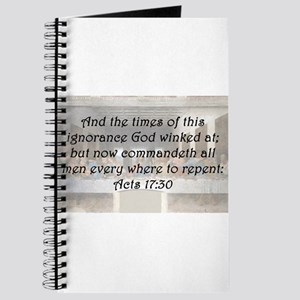 Acts 17:30 Journal