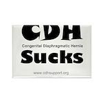 CDH Sucks Rectangle Magnet (10 pack)