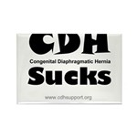 CDH Sucks Rectangle Magnet