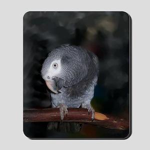 Timneh Africn Grey Mousepad