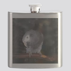 Timneh Africn Grey Flask