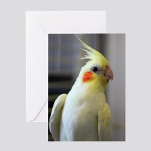 cockatiel Greeting Card