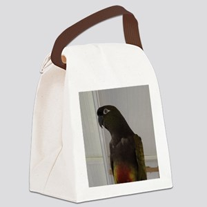 Patagonian Conure Canvas Lunch Bag