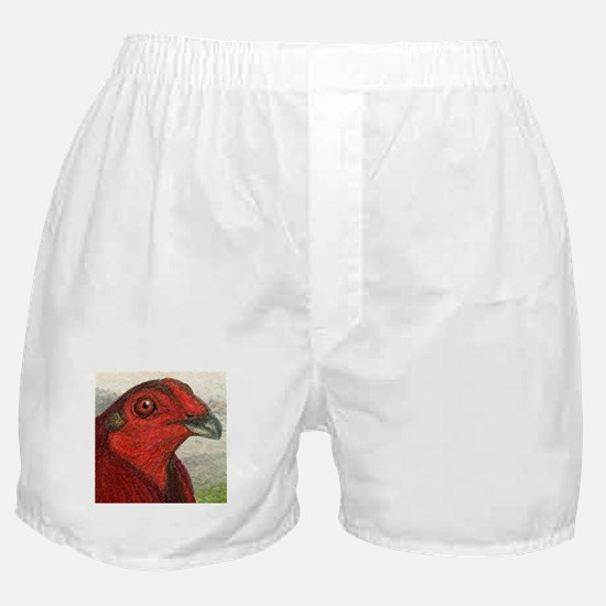 Red Gamecock Boxer Shorts