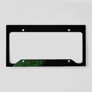 blackcap conure License Plate Holder