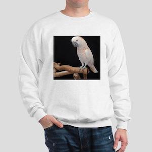 moluccan cocktoo Sweatshirt