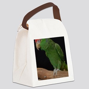 mexican redhead amazon Canvas Lunch Bag