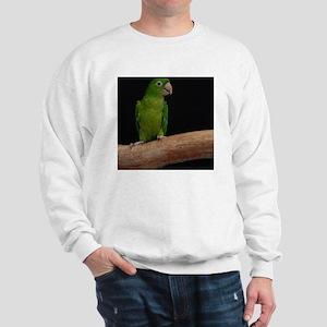 Green conure Sweatshirt