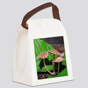 Spotted Brown Mushrooms Canvas Lunch Bag