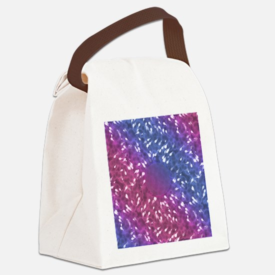 Little Swimmers - Blue/Pink Canvas Lunch Bag