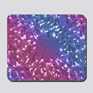 Little Swimmers - Blue/Pink Mousepad