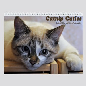 Catnip Cuties Wall Calendar