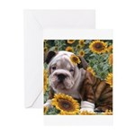 BULLDOG SMILES Greeting Cards (Pk of 10)