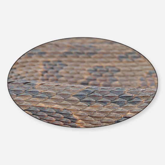 Water Snake Skin Sticker (Oval)